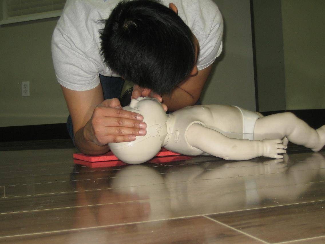 Standard first aid and cpr re certification in calgary alberta 1betcityfo Gallery